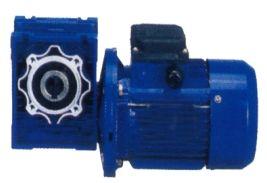 Speed reducer worm gearbox motor ekajawa krakatau perkasa for Hollow shaft gear motor